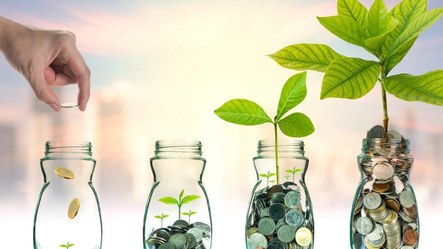 investment roundup